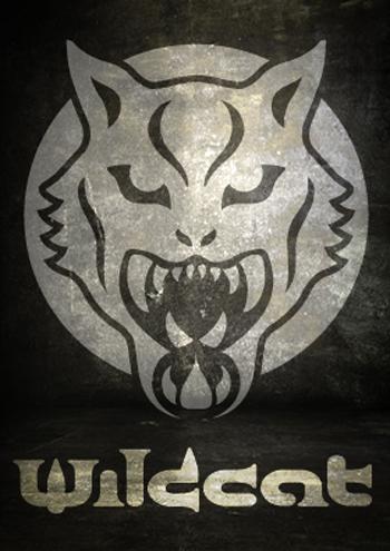 Wildcat Store Marktsteft